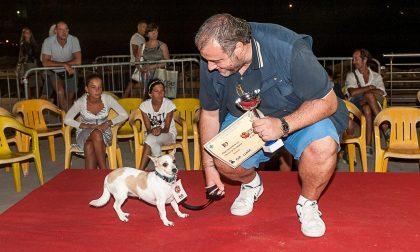 Torna a Rapallo il Dog Pride