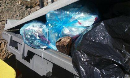 A Recco le fototrappole beccano chi abbandona i rifiuti