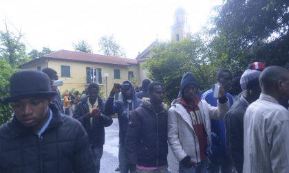 Vandalismo all'Oasi di Belpiano: «Voglio tornare a casa in Africa»