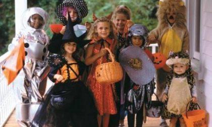 "A Recco ""Halloween at home"""
