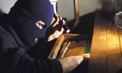 Furti in casa, rubata anche una pistola