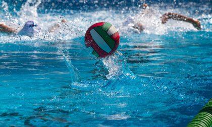 I risultati delle squadre Rapallo Nuoto