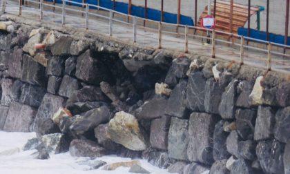 Dopo il crollo, il campo La Secca chiuso per 3/4 mesi