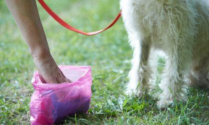 Installati i primi porta sacchetti per le deiezioni canine