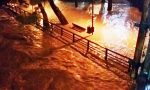 «La Giunta Toti perde i finanziamenti per le alluvioni perché non legge la mail»: l'accusa del PD