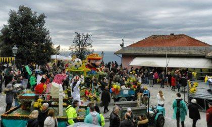 Domani è il grande giorno della 62ª Sagra della Mimosa a Pieve Ligure