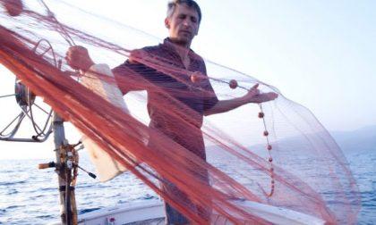 Pesca: in arrivo 800mila euro del secondo bando Feamp per le attività di pesca e acquacoltura nei porticcioli