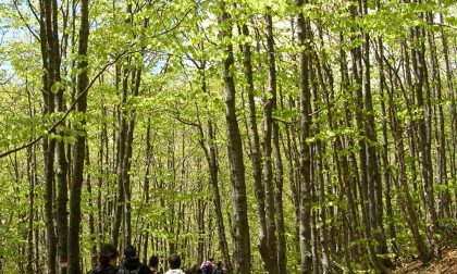 """""""Adotta un sentiero"""", l'iniziativa di Regione Liguria e C.A.I."""