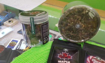 Forzano il distributore di cannabis: denunciati