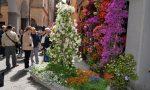 Chiavari in fiore, oltre 20 mila presenze