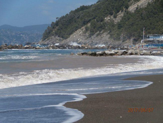 Chiavari, pulizia spiagge: Di Capua ne approfitta per una frecciata a Levaggi