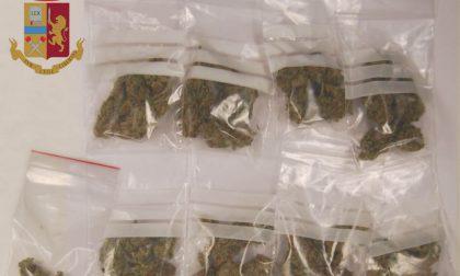 Marijuana nella zona del porto, arrestato giovane spacciatore