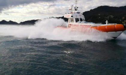 Mare sicuro, gli interventi della Guardia Costiera di Santa Margherita