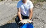 Pesca, Alessiani campione nella tecnica Feeder