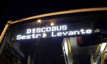 Discobus, 1600 biglietti venduti
