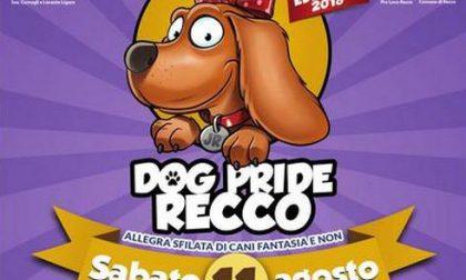 Arriva il Dog Pride sul Belvedere Tenco