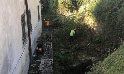 Santa Margherita, iniziata la pulizia dei torrenti