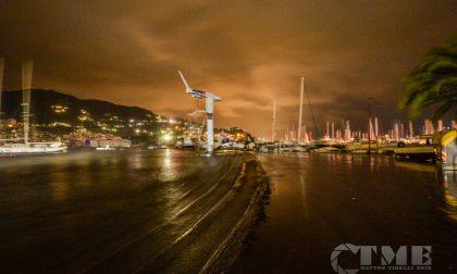 Codacons chiede al Porto Carlo Riva di visionare i documenti degli interventi fatti