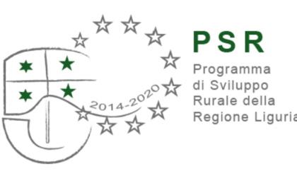 Programma di Sviluppo Rurale, due milioni per sentieri e boschi di Tigullio ed entroterra