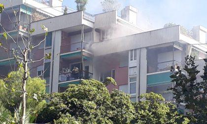 L'incendio a Chiavari? Colpa delle caldarroste