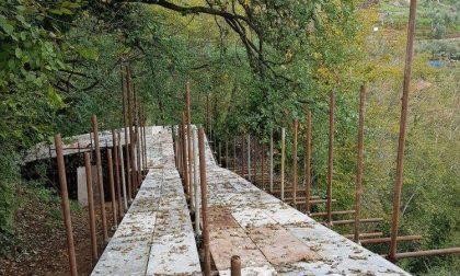 Parco di Portofino, interventi discussi in Regione