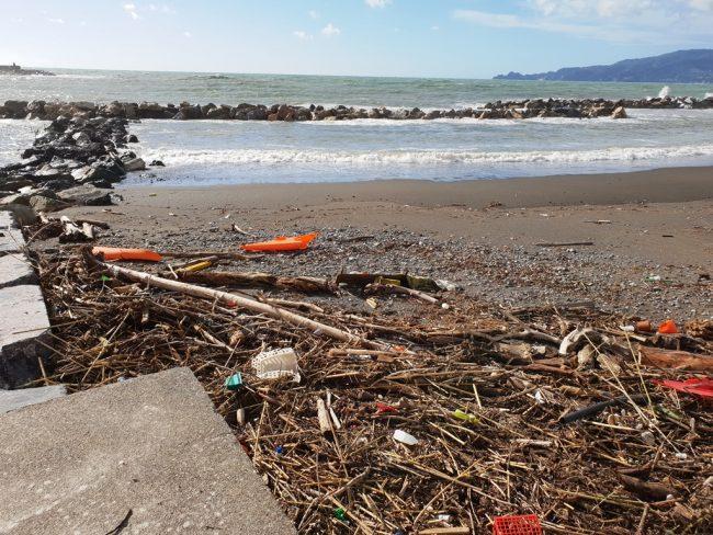 Materiale ligneo in spiaggia, i chiavaresi lo potranno bruciare negli impianti termici