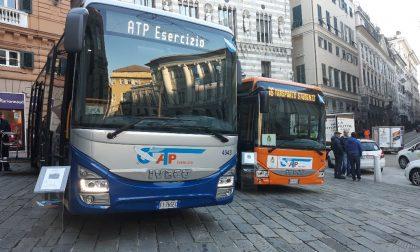 Presentati i nuovi bus di Atp