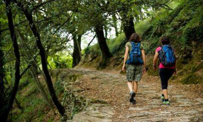Parco di Portofino, Regione Liguria terrà conto del parere dei Comuni