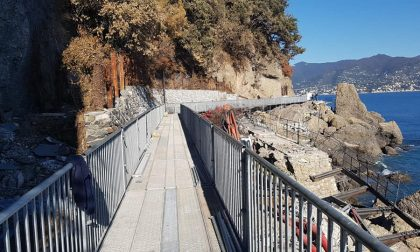Portofino, lunedì riprendono i lavori di ripristino della strada