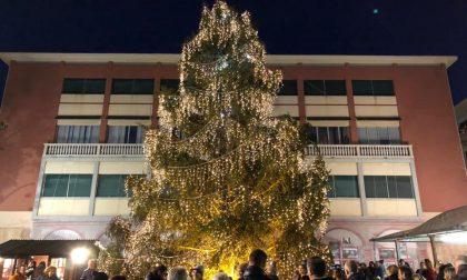 Da Ponte di Legno l'albero di Natale di Recco