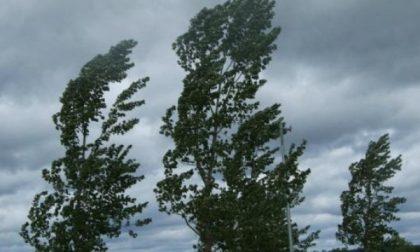 Vento di burrasca, avviso meteo di Arpal per domani
