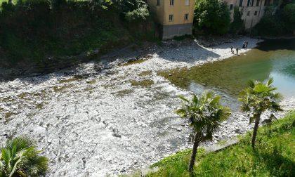 San Colombano, finanziati interventi sul torrente Lavagna