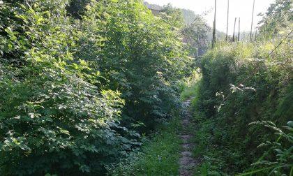 Lavagna, Valle dei Berissi:  via dei Mulini nel degrado più assoluto