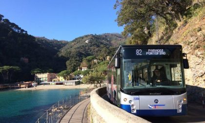 Strada per Portofino, i bambini saranno i primi a inaugurare la linea 82 sulla strada ricostruita
