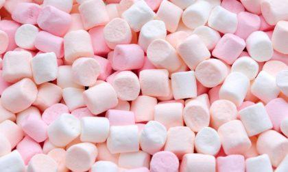 Marshmallow ritirati dal mercato per presenza di allergeni