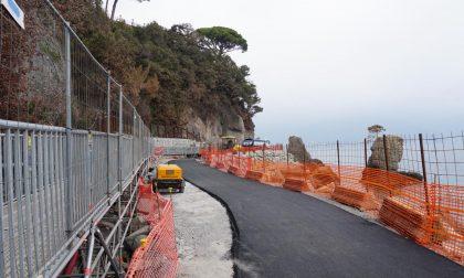Strada per Portofino, attivo anche il bus elettrico