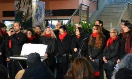 """Camogli, concerto dei """"Vox Antiqua"""" al Santuario del Boschetto"""