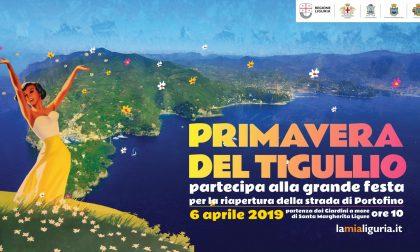 Portofino: tutto quello che c'è da sapere riguardo al 6 aprile