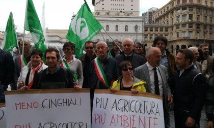 """Boitano: """"Danni ungulati le giuste proteste degli agricoltori"""""""