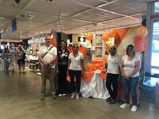 Consulta del Volontariato oggi all' IKEA