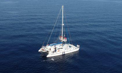 Partita la campagna di monitoraggio su plastica in mare del santuario dei cetacei