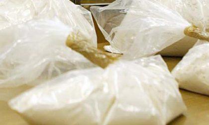 Operazione Nevischio: sequestrata mezza tonnellata di cocaina a Genova