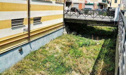 Partono i lavori di pulizia dei corsi d'acqua a Lavagna