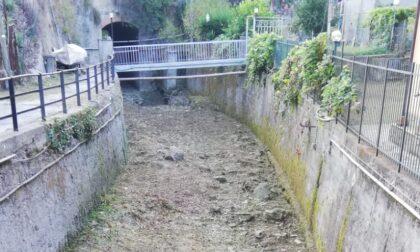 Recco si prepara alle piogge autunnali con la pulizia dei corsi d'acqua