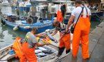 Liguria, approvato il piano triennale della pesca e dell'acquacoltura