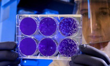 Coronavirus in Liguria, 5.166 positivi, 47 più di ieri