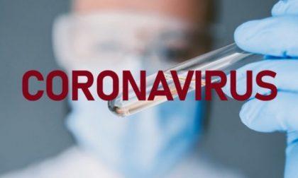 Coronavirus in Liguria: finalmente in calo l'ammontare dei positivi