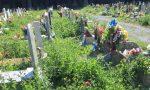 """""""Vergogna"""" Guardate in che condizioni versa il Cimitero Monumentale di Staglieno"""