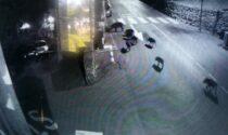 Cinghiali in cerca di cibo nel centro storico