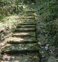 Recco, prosegue la pulizia di scalinate e creuze